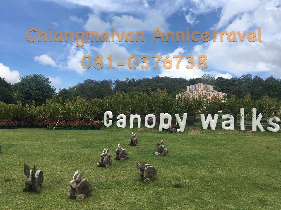 chiangmaivan canopy walks